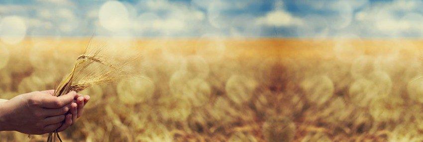 Er et landbrug selskab noget for dig?